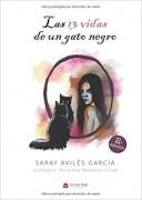 Las 13 vidas de un gato negro