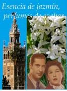 Esencia de jazmín. Perfumes de azahar